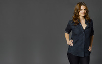 Stana Katic [2] wallpaper 2560x1600 jpg