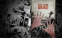 The Walking Dead [10] wallpaper 1920x1080 jpg