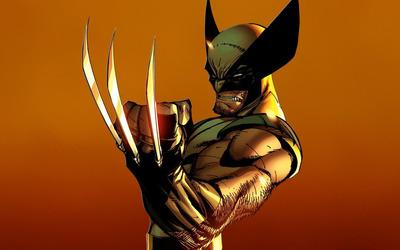 Wolverine [2] wallpaper