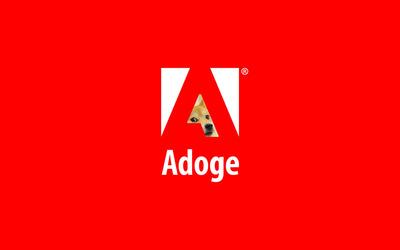 Adoge wallpaper