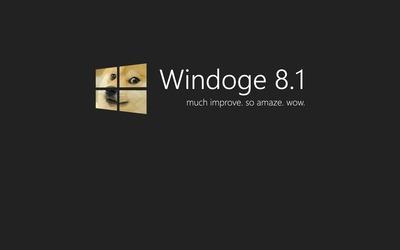 Doge Windows 8.1 wallpaper