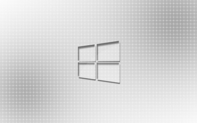 Glass Windows 10 on a light grid wallpaper