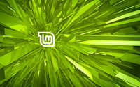 Linux Mint [4] wallpaper 1920x1200 jpg