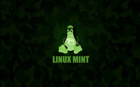 Linux Mint [2] wallpaper 2560x1600 jpg