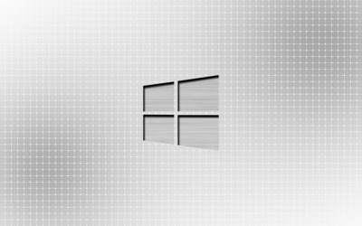 Metal Windows 10 on a light grid wallpaper