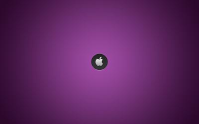 Silver Apple on purple line pattern wallpaper