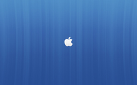 White Apple logo on blue lines wallpaper 2560x1600 jpg