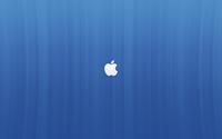 White Apple logo on blue lines wallpaper 2560x1600 jpg
