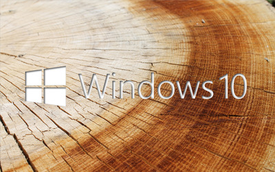 Windows 10 white text logo on tree rings wallpaper