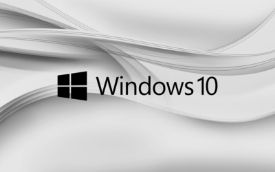 Windows 10 black text logo on gray aves wallpaper