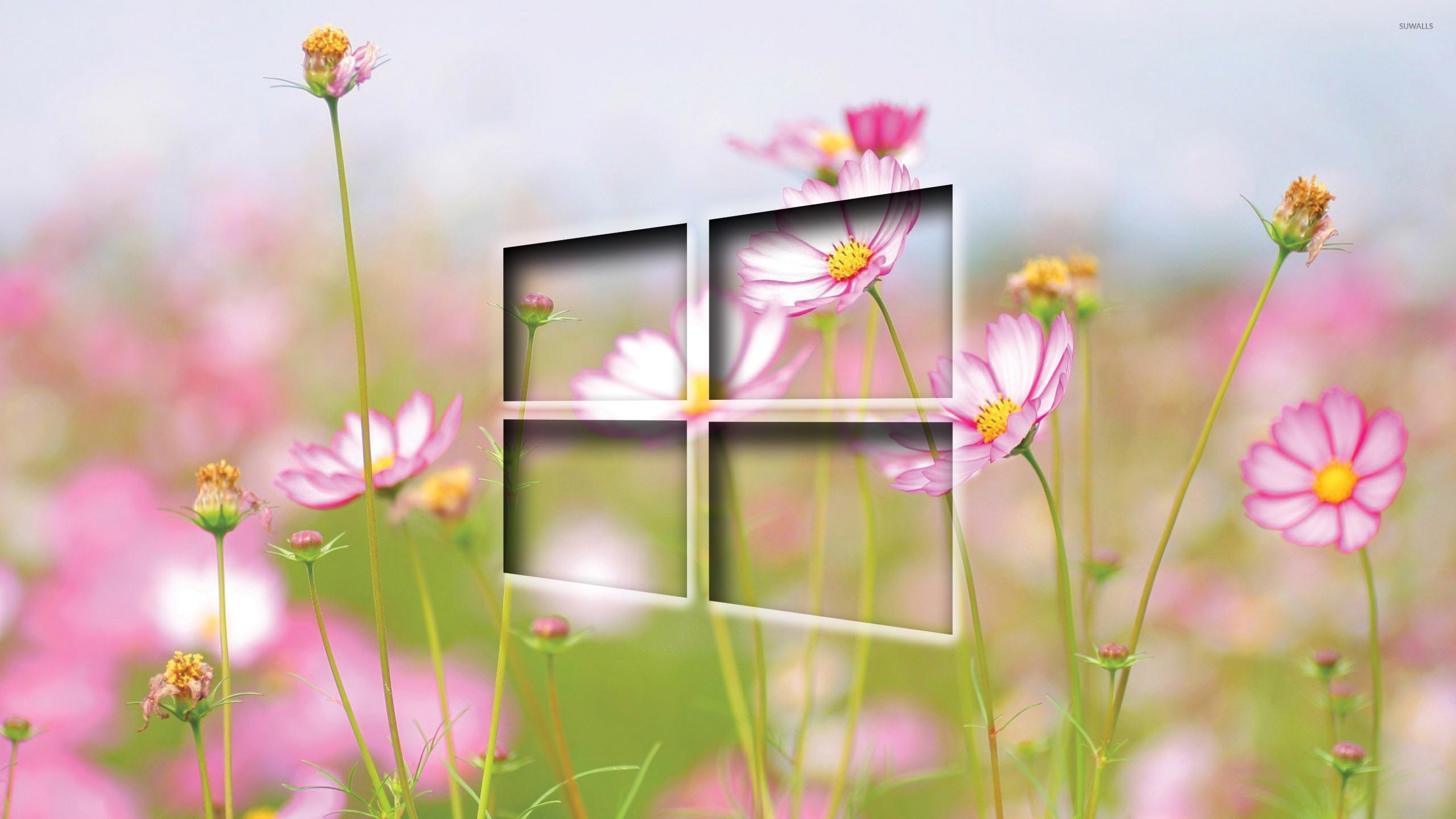Windows 10 Computer Wallpapers, Desktop Backgrounds | 2560x1440 ...