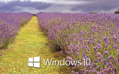 Windows 10 white text logo over the lavender field wallpaper