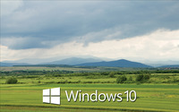 Windows 10 white text logo over the green field wallpaper 2560x1600 jpg