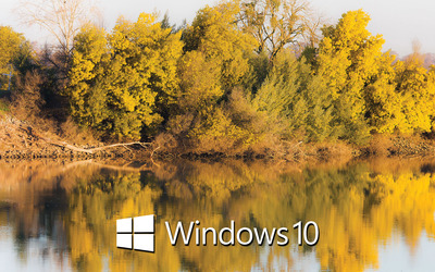 Windows 10 text logo on the tree reflection wallpaper