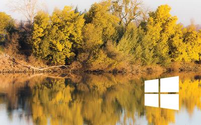 Windows 10 simple white logo on the tree reflection wallpaper