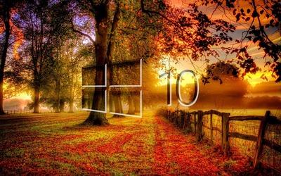 Windows 10 in the fall glass logo wallpaper