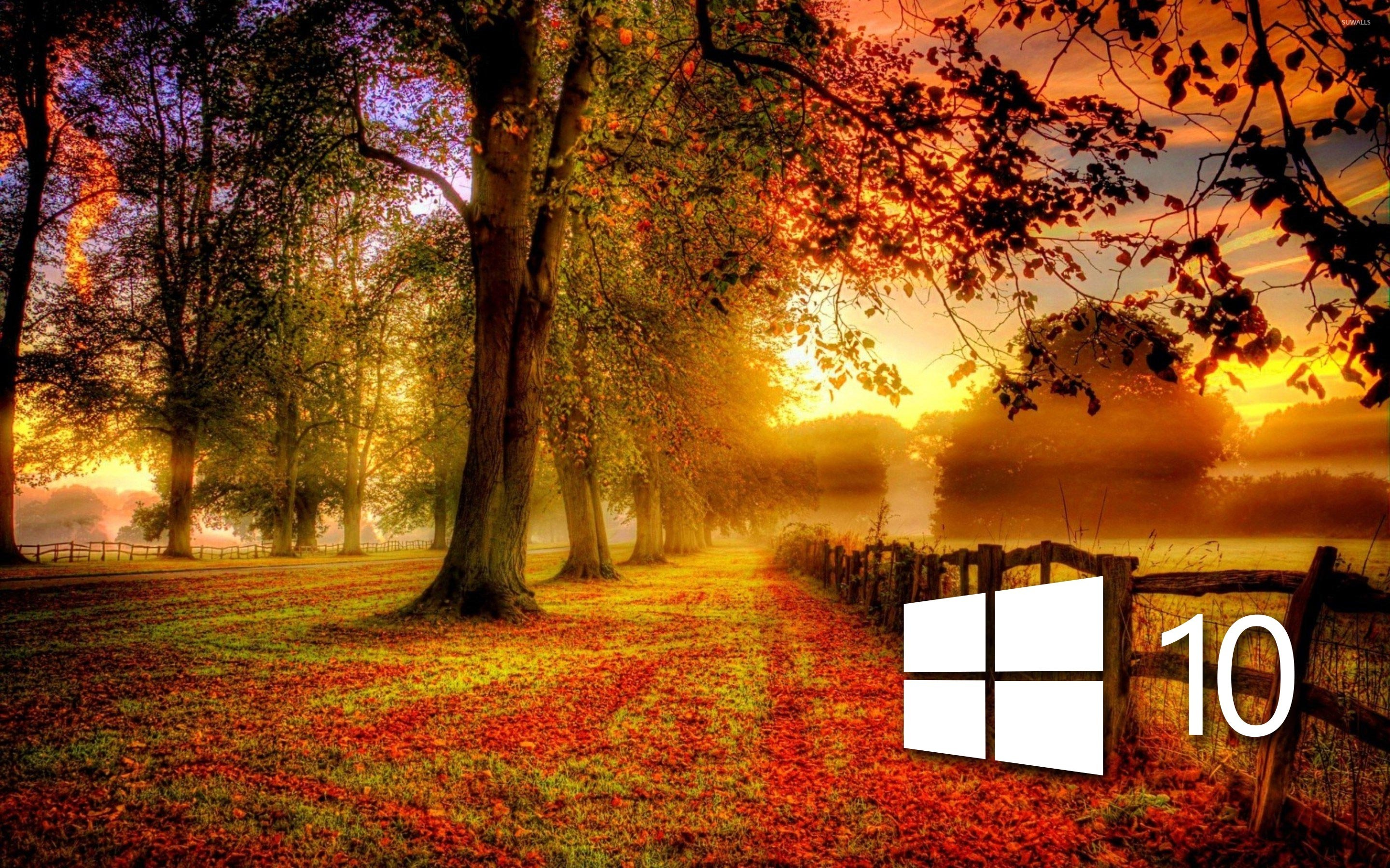 Windows  In The Fall Simple Logo Wallpaper