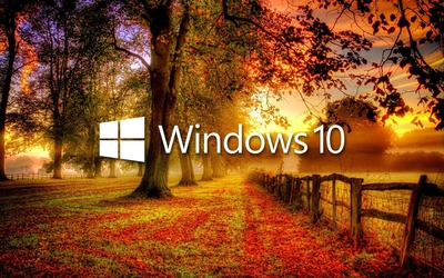 Windows 10 in the fall white text logo wallpaper