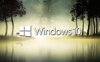 Windows 10 in the foggy forest wallpaper 1920x1080 jpg