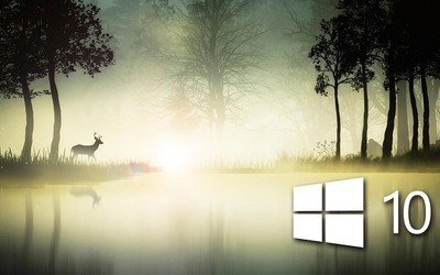Windows 10 in the foggy forest [2] Wallpaper