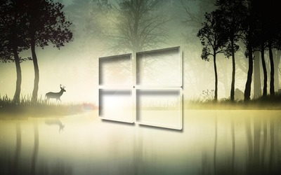 Windows 10 in the foggy forest [3] wallpaper