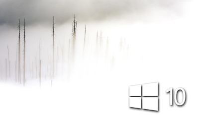 Windows 10 in the foggy winter day simple white logo wallpaper