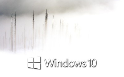 Windows 10 in the foggy winter day white text logo wallpaper