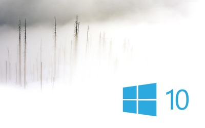 Windows 10 in the foggy winter day simple blue logo wallpaper