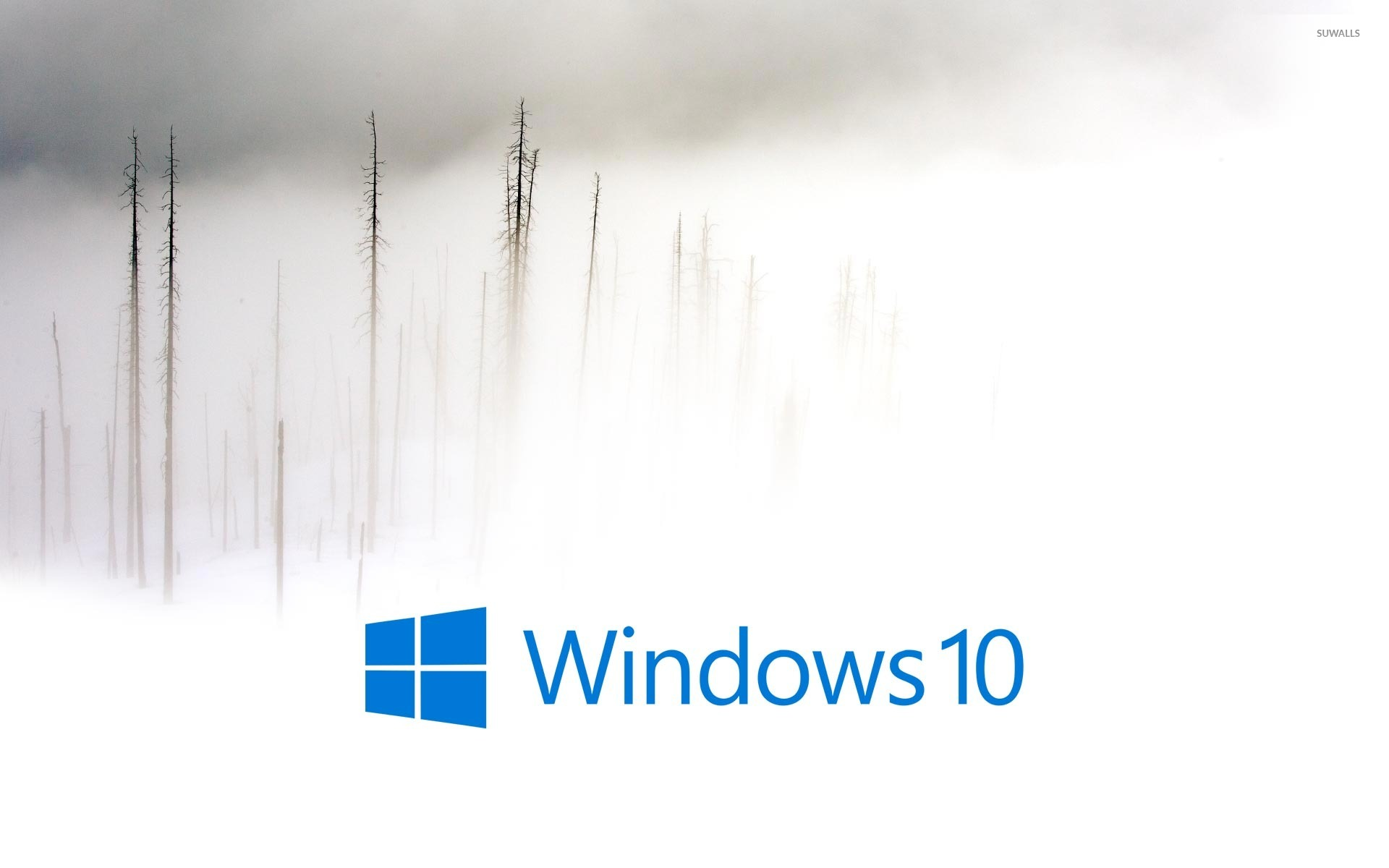 Windows 10 In The Foggy Winter Day Blue Text Logo Wallpaper