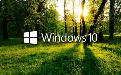 Windows 10 in the green forest white logo with text wallpaper
