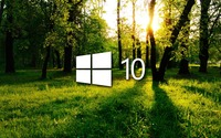 Windows 10 in the green forest white logo wallpaper 1920x1080 jpg
