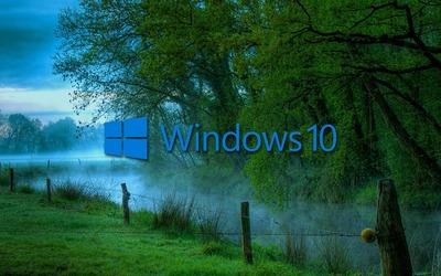 Windows 10 in the misty morning blue text logo wallpaper