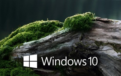 Windows 10 on a mossy log [3] wallpaper