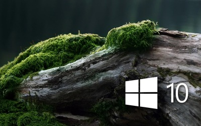 Windows 10 on a mossy log [4] wallpaper