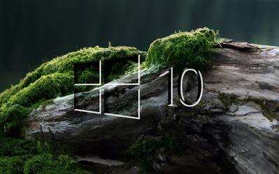 Windows 10 on a mossy log [2] wallpaper