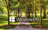 Windows 10 on a park alley text logo wallpaper 1920x1080 jpg