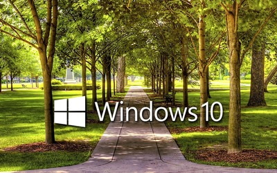 Windows 10 on a park alley text logo wallpaper