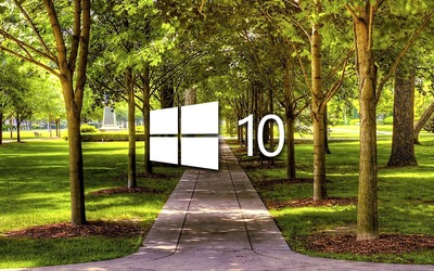 Windows 10 on a park alley white logo wallpaper