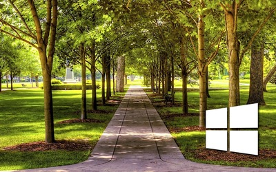 Windows 10 on a park alley simple white logo wallpaper
