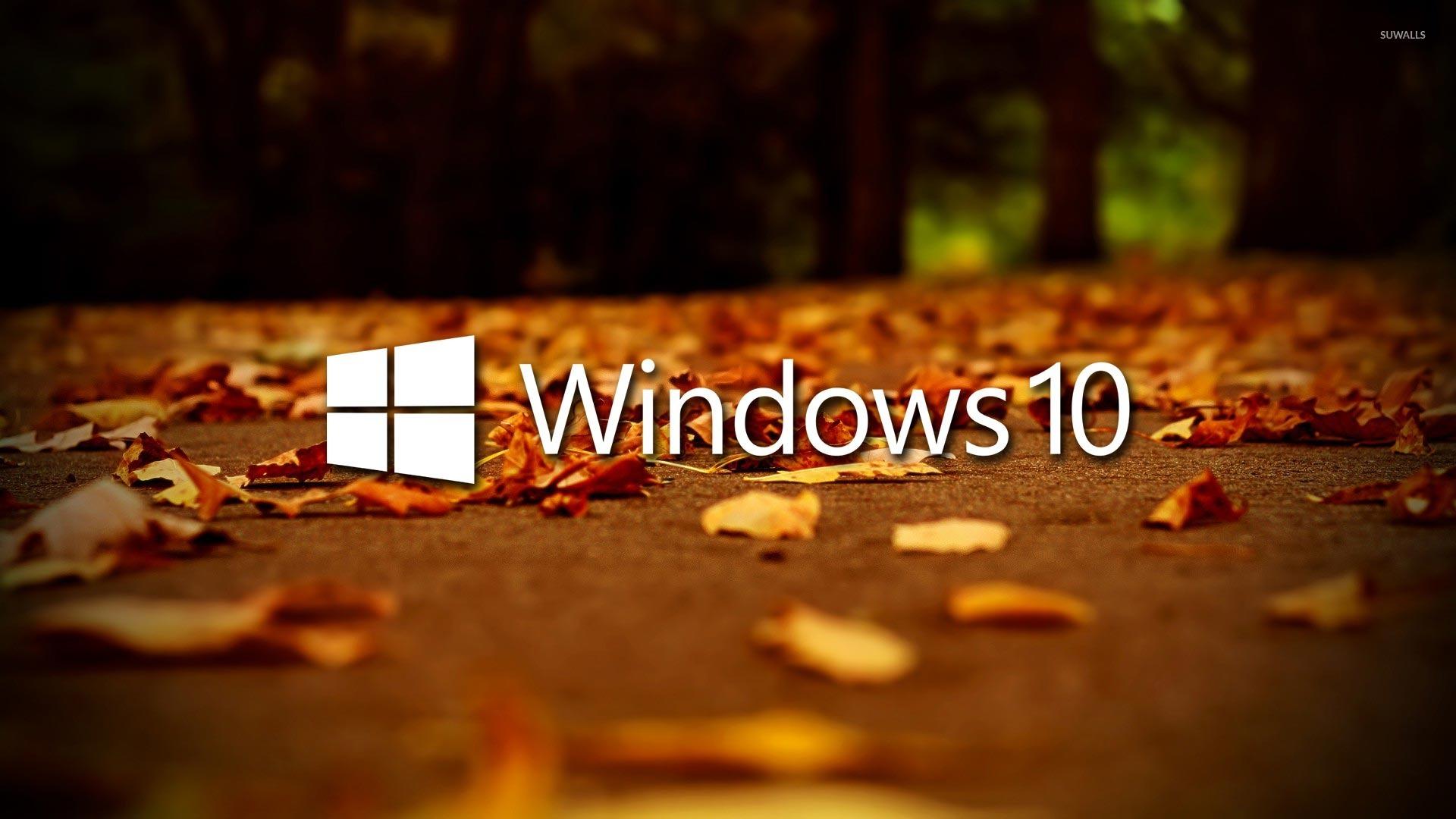 windows 10 on autumn leaves 48845