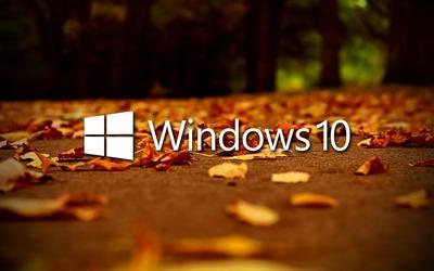 Windows 10 on autumn leaves [2] wallpaper
