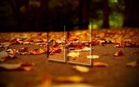 Windows 10 on autumn leaves wallpaper 1920x1080 jpg