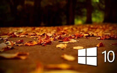 Windows 10 on autumn leaves [4] wallpaper