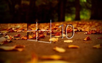 Windows 10 on autumn leaves [3] wallpaper