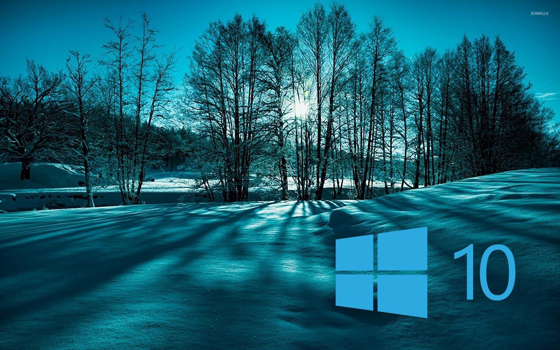 Windows 10 on snowy trees simple blue logo wallpaper for Window 10 wallpaper