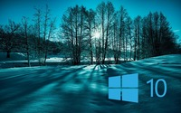 Windows 10 on snowy trees simple blue logo wallpaper 1920x1200 jpg