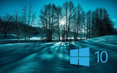 Windows 10 on snowy trees simple blue logo wallpaper