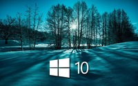 Windows 10 on snowy trees simple white logo wallpaper 1920x1200 jpg