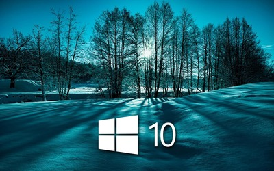 Windows 10 on snowy trees simple white logo wallpaper