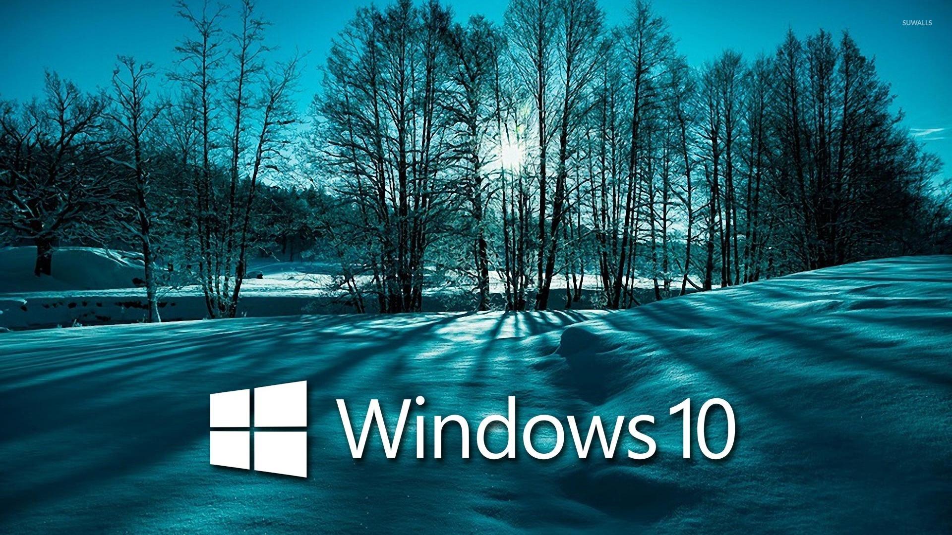 Windows 10 On Snowy Trees White Text Logo Wallpaper